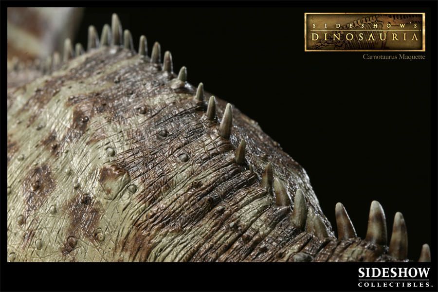 [Bild: 200016-carnotaurus-009.jpg]