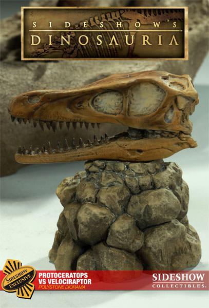 [Bild: 2000771-protoceratops-vs-velociraptor-002.jpg]