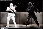 Snake Eyes and Timber Sixth Scale Figure