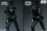 Death Trooper Specialist Premium Format™ Figure