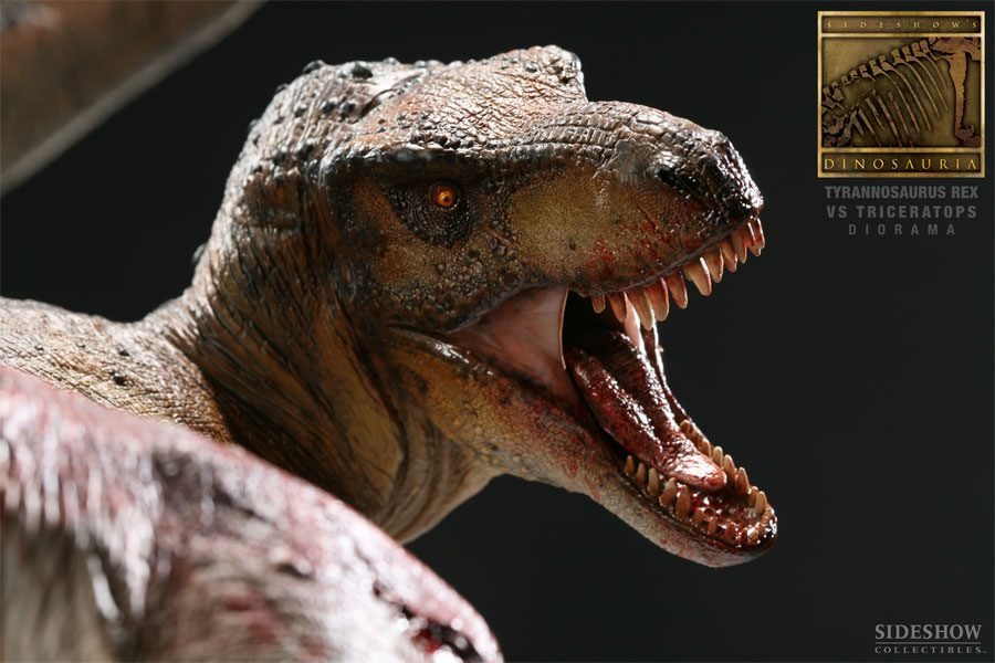 [Bild: 3102-tyrannosaurus-rex-vs-triceratops-diorama-006.jpg]