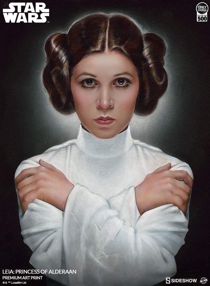 [Bild: star-wars-leia-princess-of-alderaan-prem...654-03.jpg]