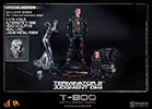 Hot Toys T-800 (Battle Damaged) Sixth Scale Figure