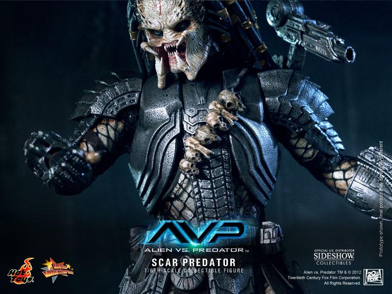 Predator Scar Predator Sixth Scale Figure By Hot Toys Sideshow