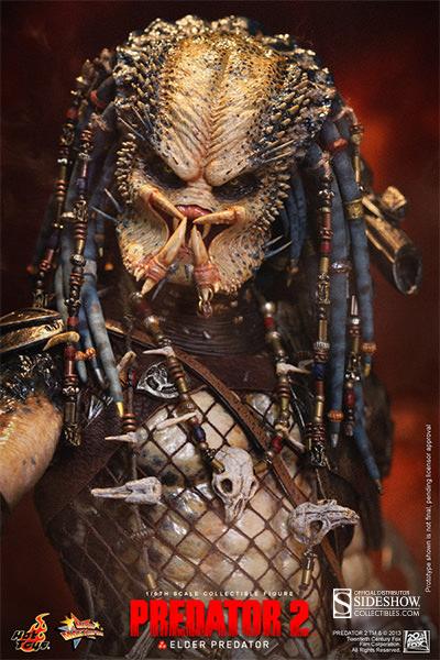 http://www.sideshowtoy.com/assets/products/902167-elder-predator/lg/902167-elder-predator-015.jpg