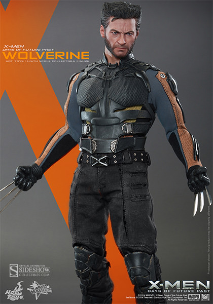 https://www.sideshowtoy.com/assets/products/902281-wolverine/lg/902281-wolverine-008.jpg
