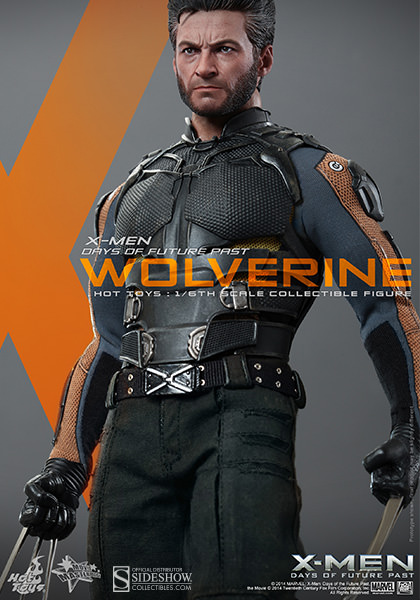 https://www.sideshowtoy.com/assets/products/902281-wolverine/lg/902281-wolverine-009.jpg