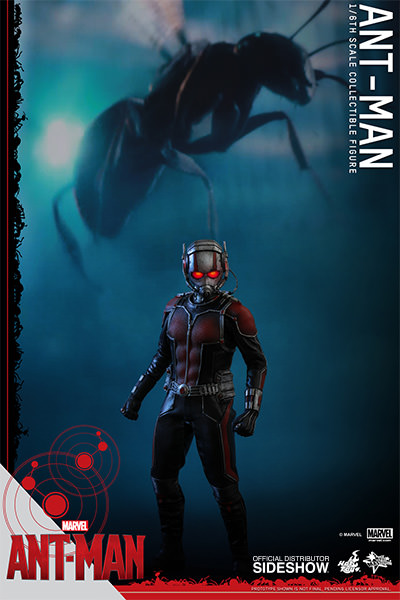 https://www.sideshowtoy.com/assets/products/902448-ant-man/lg/902448-ant-man-06.jpg