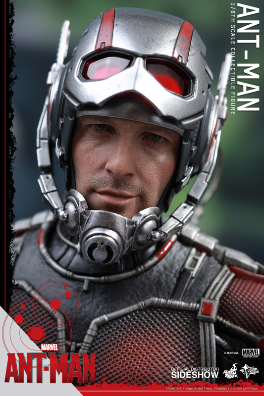 https://www.sideshowtoy.com/assets/products/902448-ant-man/lg/902448-ant-man-19.jpg