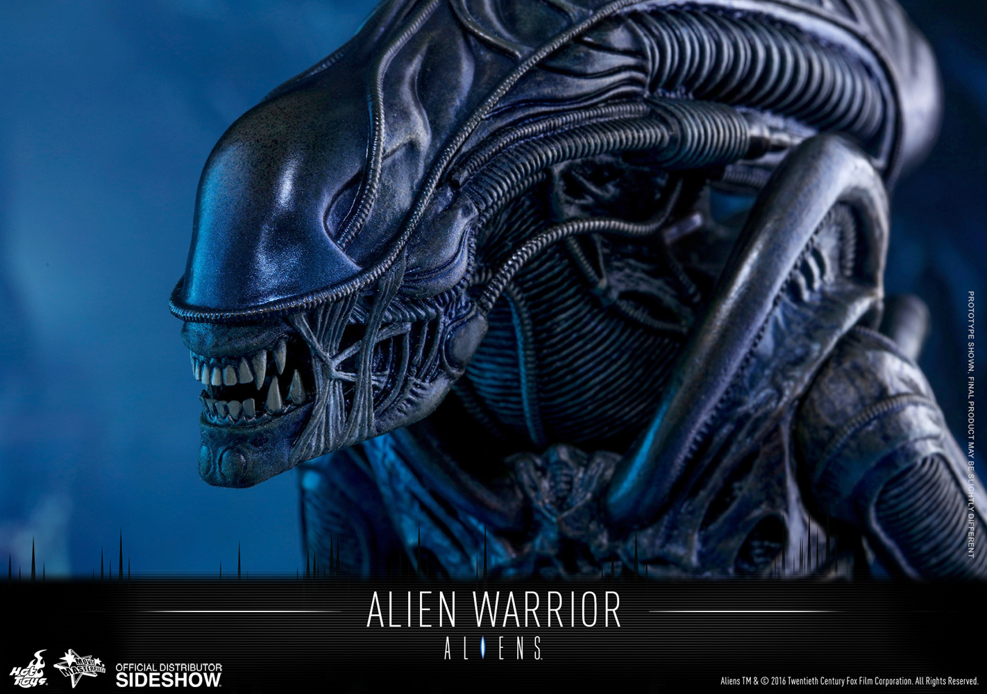 aliens alien warrior sixth scale figure by hot toys warrior clipart pearl stephens warrior clip art images