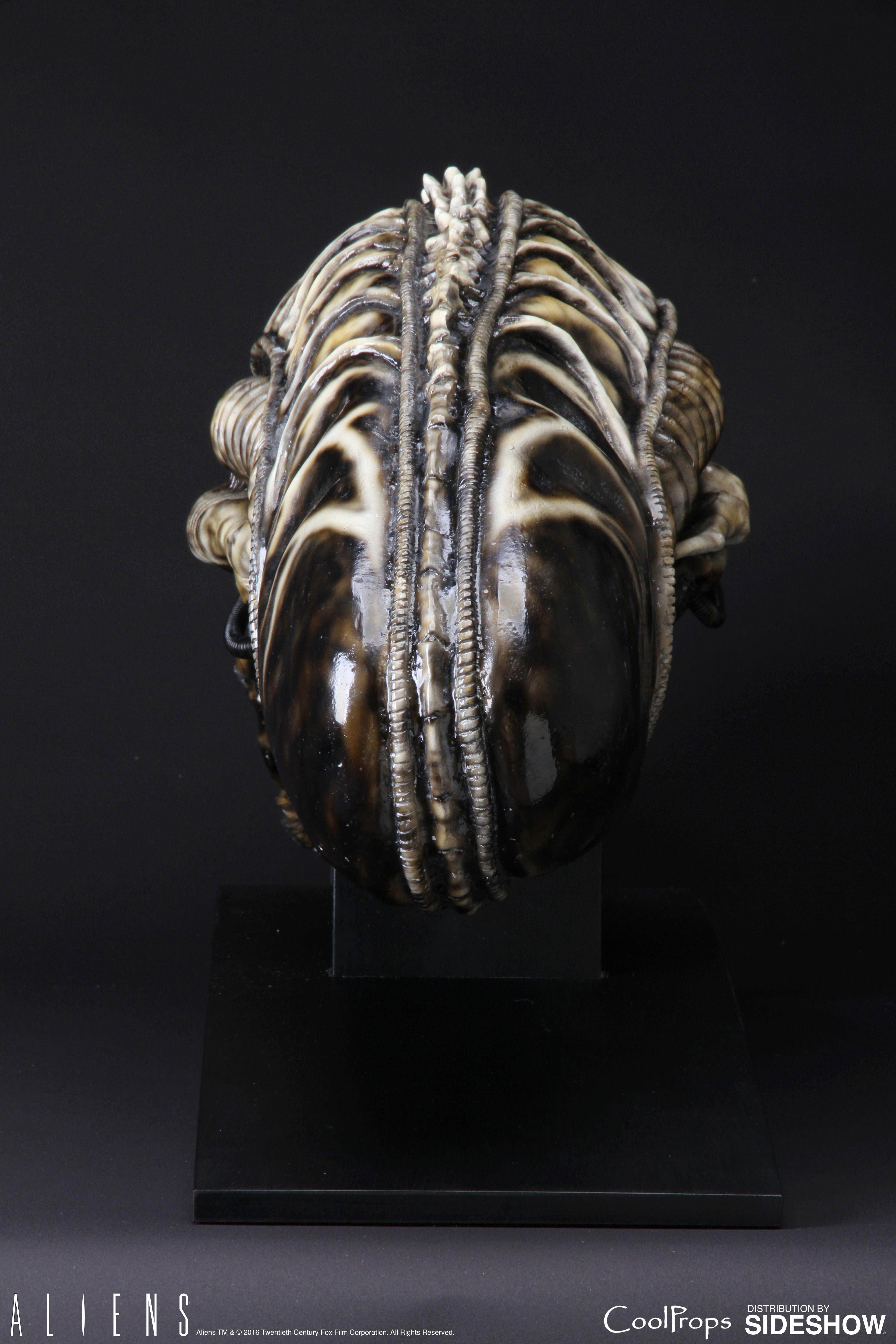 Aliens Alien Warrior Life-Size Head Prop Replica by CoolProp ...