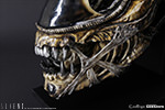 Alien Warrior Life-Size Head Prop Replica