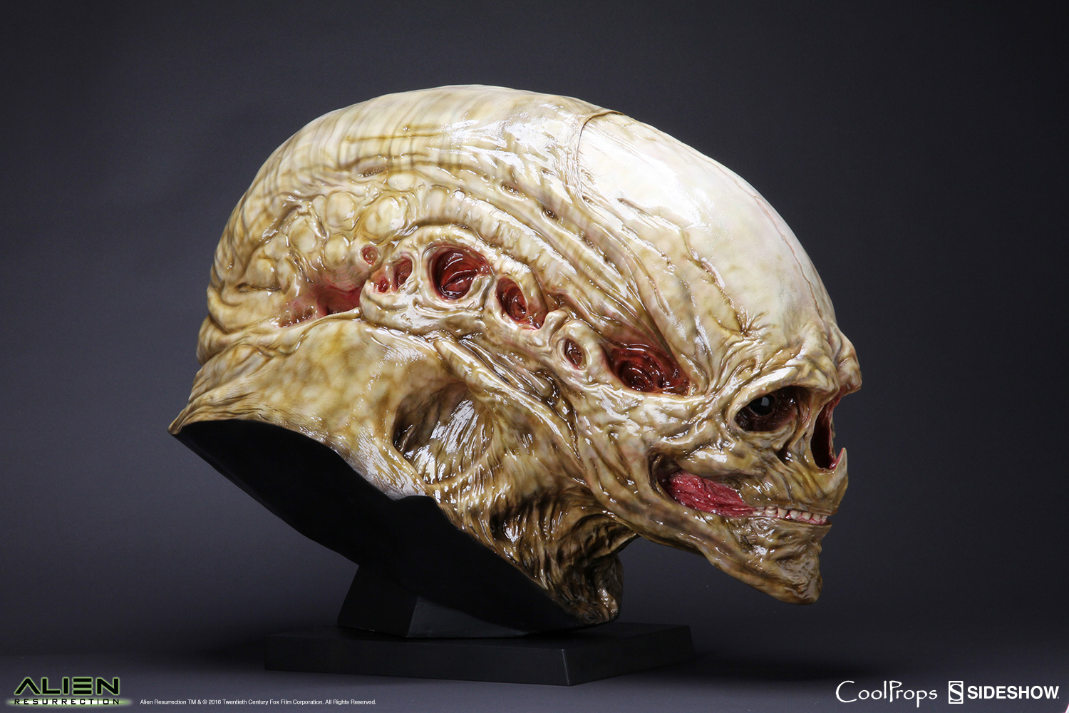 Alien Resurrection Alien Newborn Life Size Head Prop