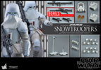 Hot Toys Snowtroopers Sixth Scale Figure
