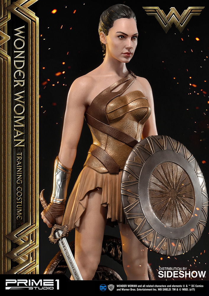 Where to buy wonder woman costume-7857