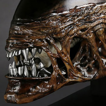 Alien New Warrior Life-Size Head Collectible