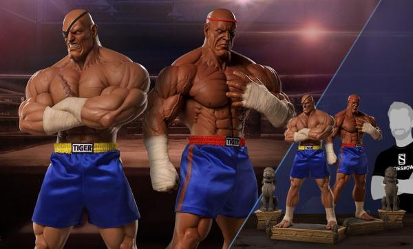 Sagat Evolution Collectible Set