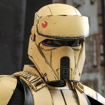 Hot Toys Shoretrooper™ Collectible