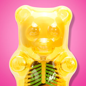 Funny Anatomy Gummi Bear (Clear Yellow) Collectible Figure