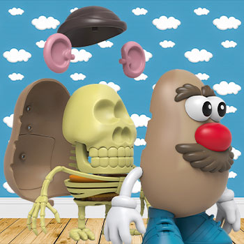 4D XXRAY Mr. Potato Head Collectible Figure