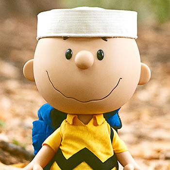 Charlie Brown Vinyl Collectible