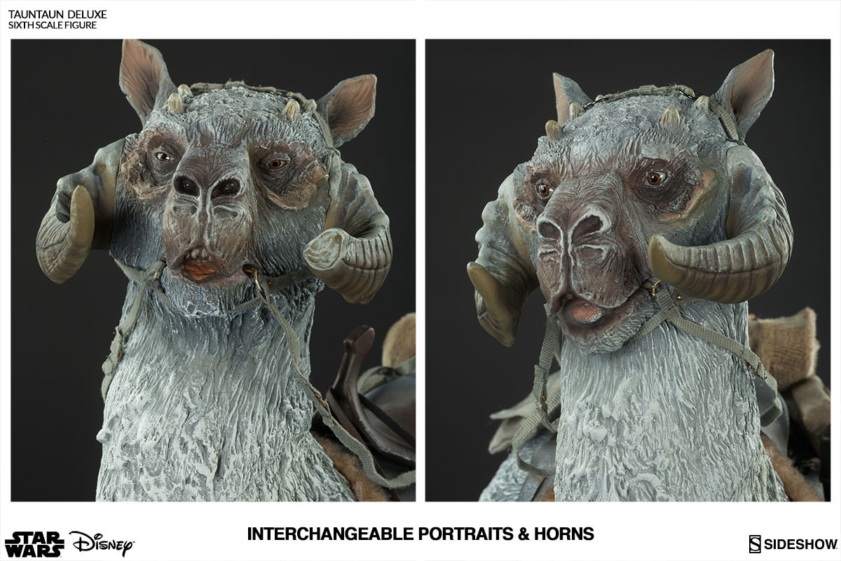Tauntaun deluxe sideshow collectibles