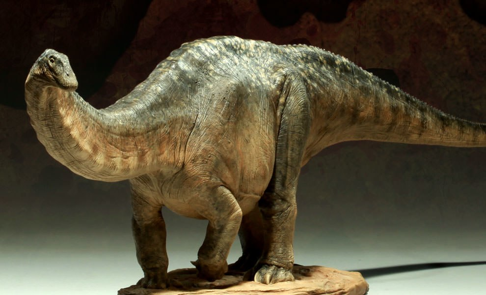 Gallery Feature Image of Apatosaurus Maquette - Click to open image gallery