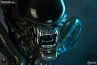 Gallery Image of Alien Big Chap Legendary Scale™ Bust