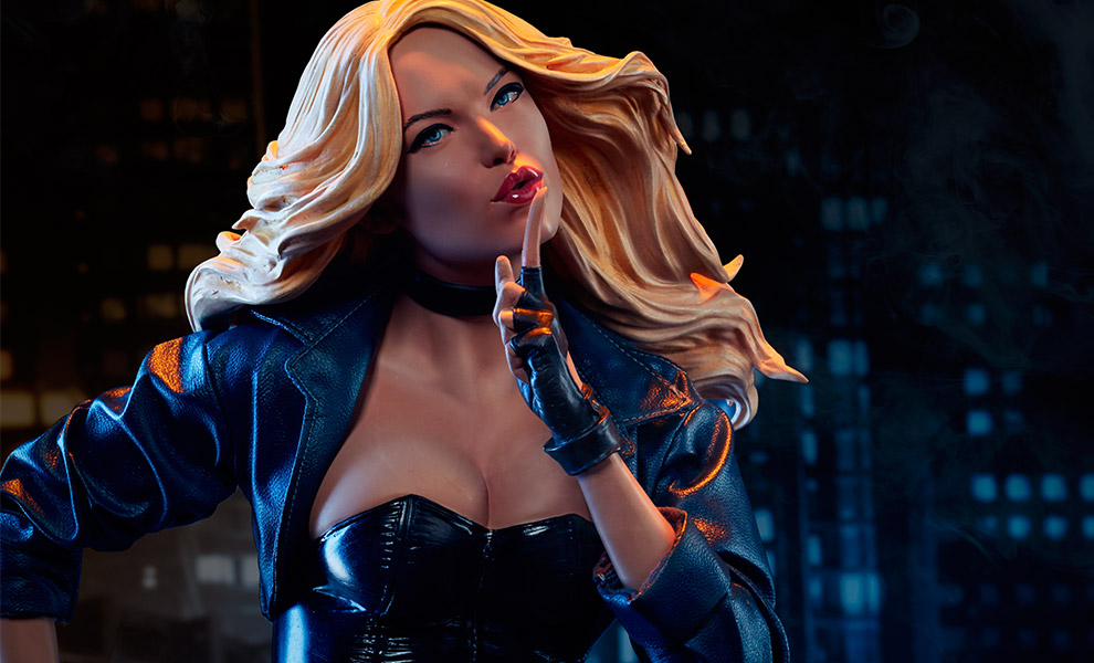 Gallery Feature Image of Black Canary Premium Format™ Figure - Click to open image gallery