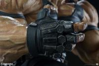 Gallery Image of Bane Premium Format™ Figure