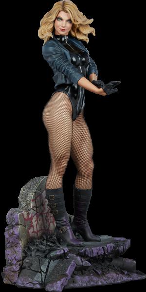 Black Canary Premium Format™ Figure