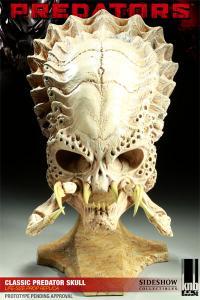Gallery Image of Classic Predator Skull Prop Replica