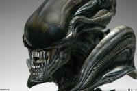 Gallery Image of Alien Xenomorph Parasite Mythos Legendary Scale™ Bust