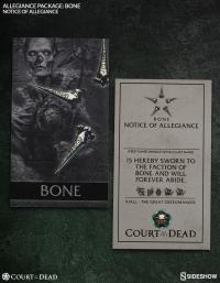 Gallery Image of Allegiance Package: Bone Model Kit