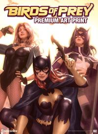 Gallery Image of Birds of Prey Art Print