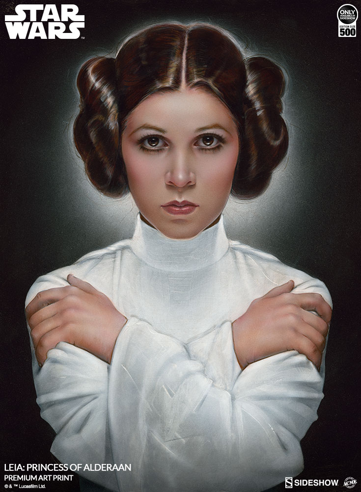 Star Wars Leia Princess of Alderaan Art Print by ACME ...