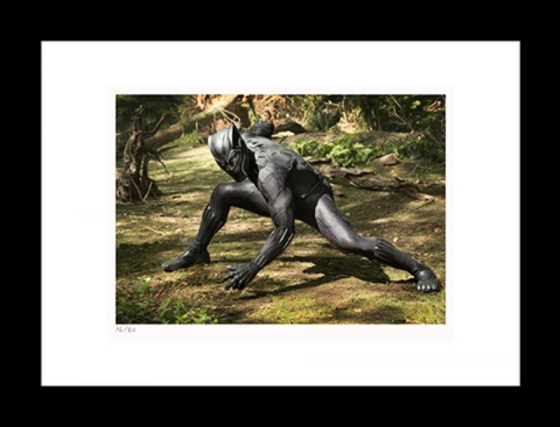 Black Panther on Set Art Print - 16x20 Landscape