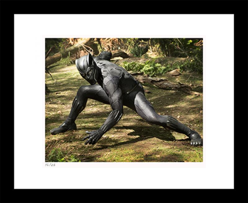 Black Panther on Set Art Print - 11x14 Landscape