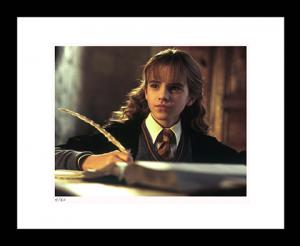 Hermione Does Homework Art Print