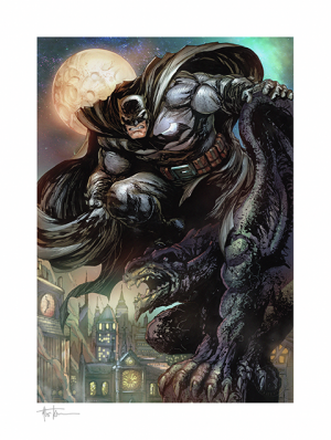 Batman™: The Dark Knight Art Print