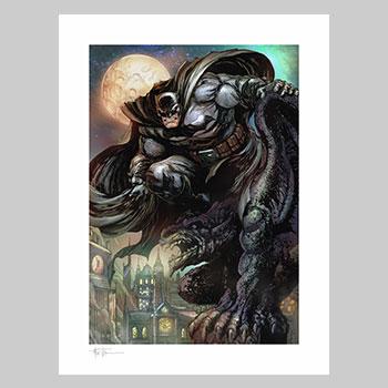 Batman: The Dark Knight Art Print