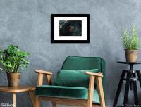 Gallery Image of Indominus Rex Art Print
