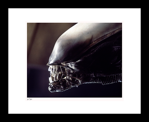 Classic Stills Alien Art Print