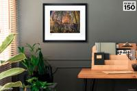 Gallery Image of Curious Art Print
