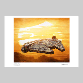 Falcon Sunset Art Print