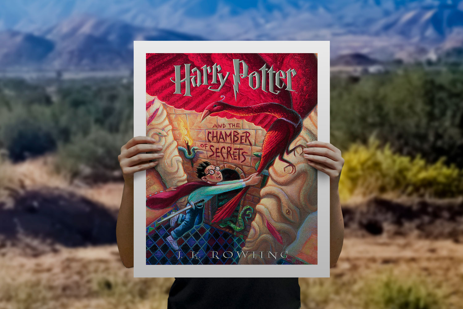 Harry Potter and the Chamber of Secrets Art Print feature image