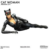 Gallery Image of Catwoman- Arkham City Collectible Figure
