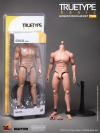 Gallery Image of TrueType - Advanced Muscular Body Sixth Scale Figure