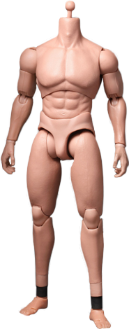 Hot Toys TrueType - Advanced Muscular Body Sixth Scale Figure