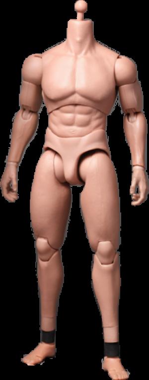 TrueType - Advanced Muscular Body Sixth Scale Figure